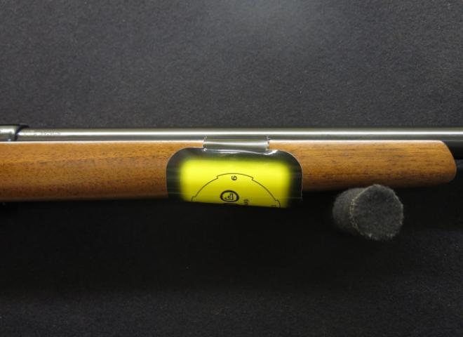 CZ .17 HMR 455 Varmint Carbine