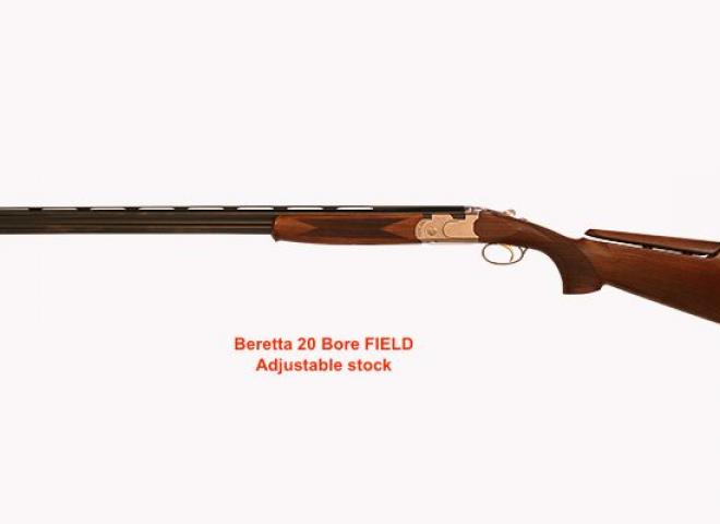 Beretta 20 gauge Silver Pigeon 1 Field Adjustable