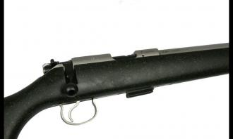CZ .22 LR 455 American (Synthetic Stainless) - Image 1