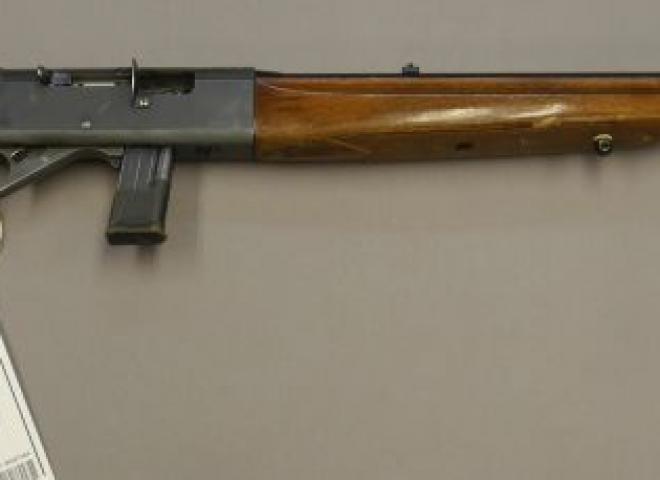 Anschutz .22 LR 525