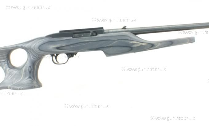 Ruger .22 LR 10/22 Barracuda