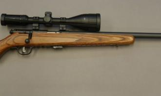 Savage Arms .22 LR MARK II (BROWN LAMINATE) - Image 1