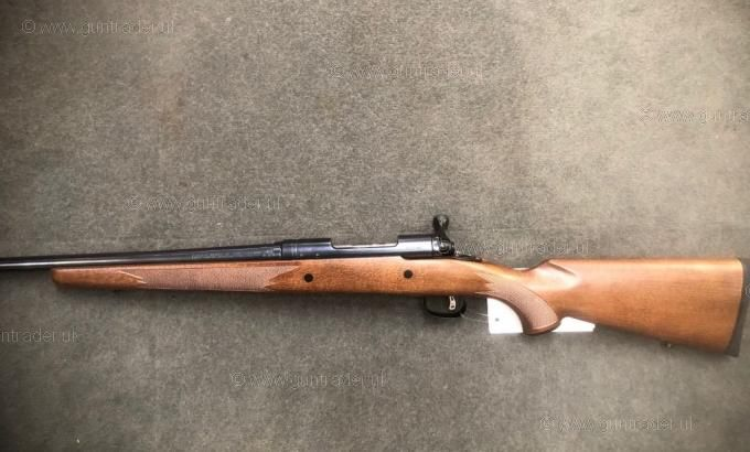 Savage Arms .243 Model 11