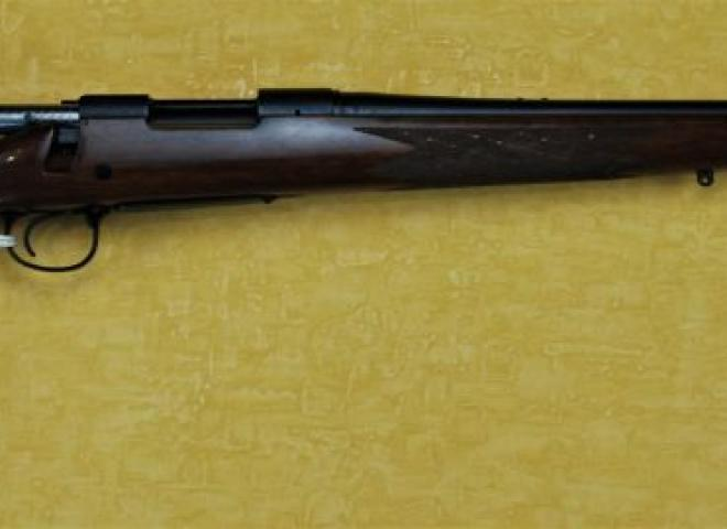 Remington .223
