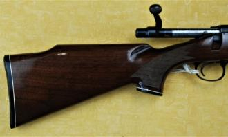 Remington .223 - Image 2