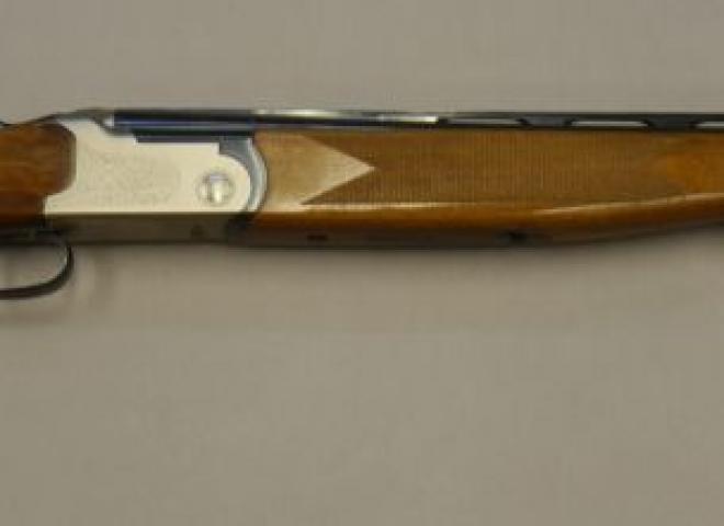 Lanber 20 gauge