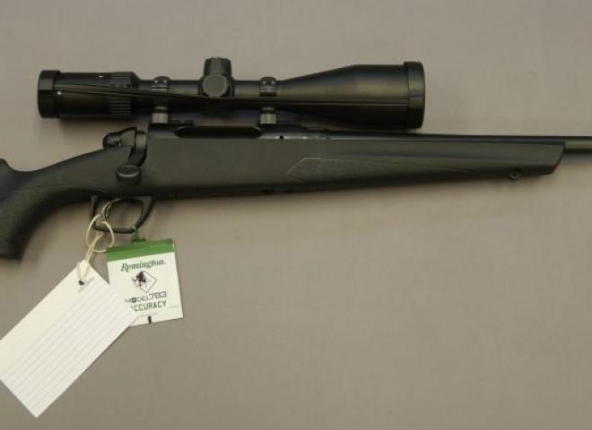 Remington .308 783 (Synthetic)