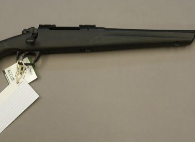 Remington .243 783 (Synthetic)
