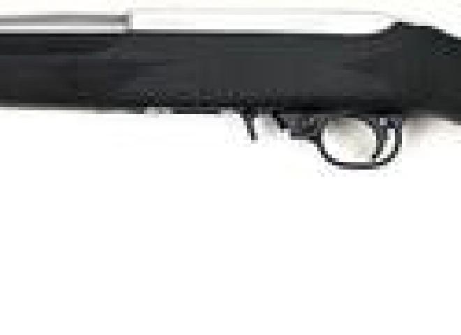 Ruger .22 LR 10/22 Hogue Synthetic Stainless
