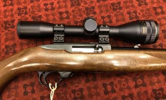 Ruger .22 LR 10/22 Carbine (Stutzen stock) - Image 1