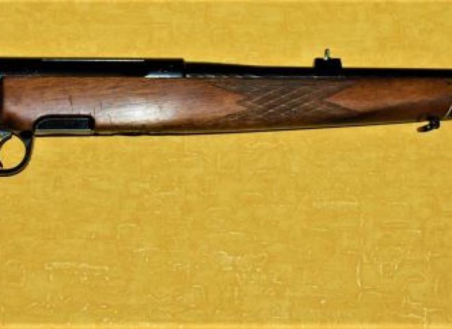 Steyr Mannlicher .308 Norma Magnum