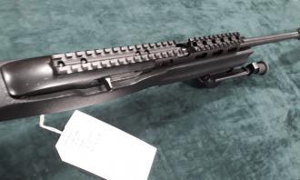 Ruger .22 LR 10/22 Custom - Image 1