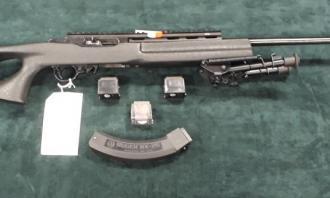 Ruger .22 LR 10/22 Custom - Image 4