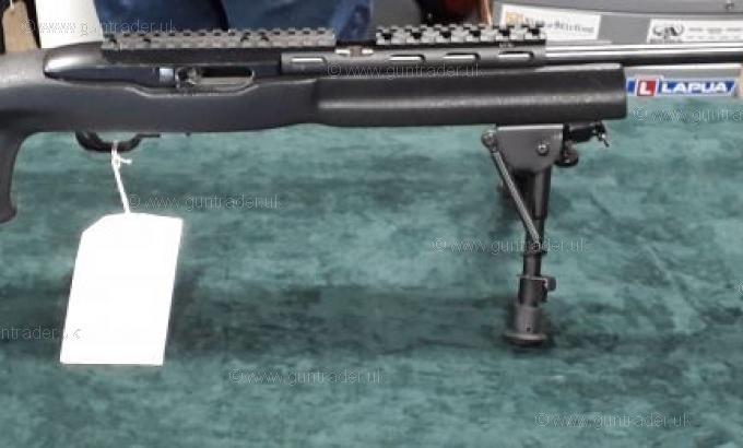 Ruger .22 LR 10/22 Custom