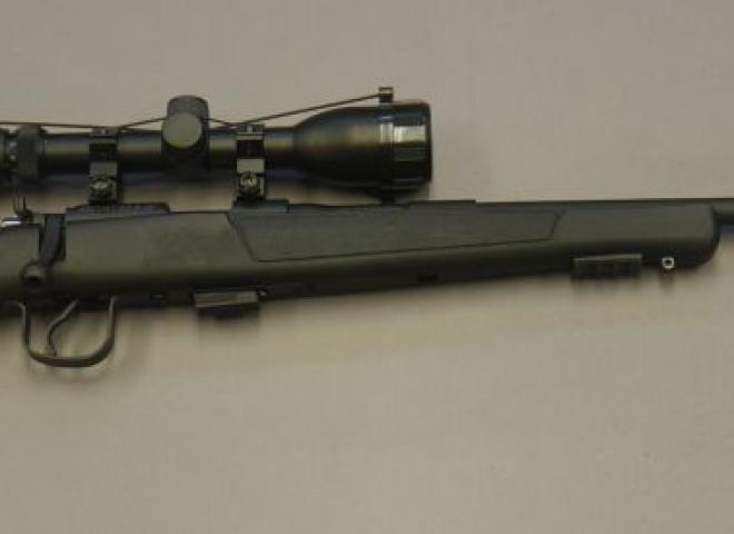 Hatsan Arms .22 LR Escort (American)