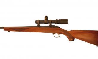 Ruger .22 LR M77/22 - Image 2