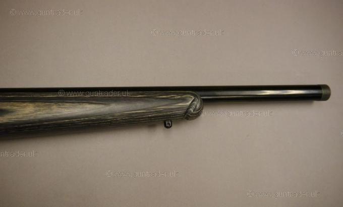 Ruger .17 HMR American Rimfire (Target)