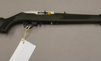 Ruger .22 LR 10/22 Synthetic Stainless - Image 1