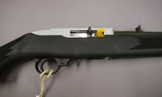 Ruger .22 LR 10/22 Synthetic Stainless - Image 3
