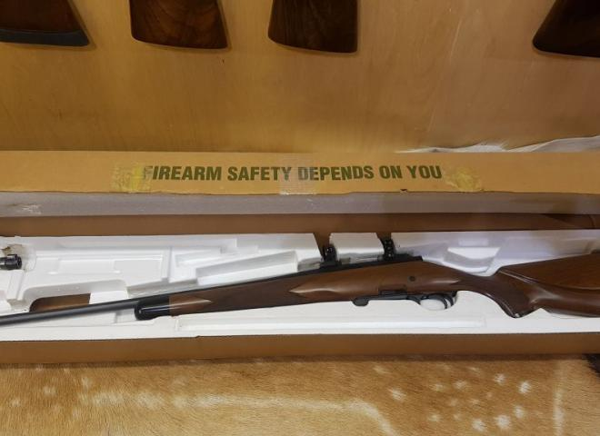 Remington .243 700 Mountain DM