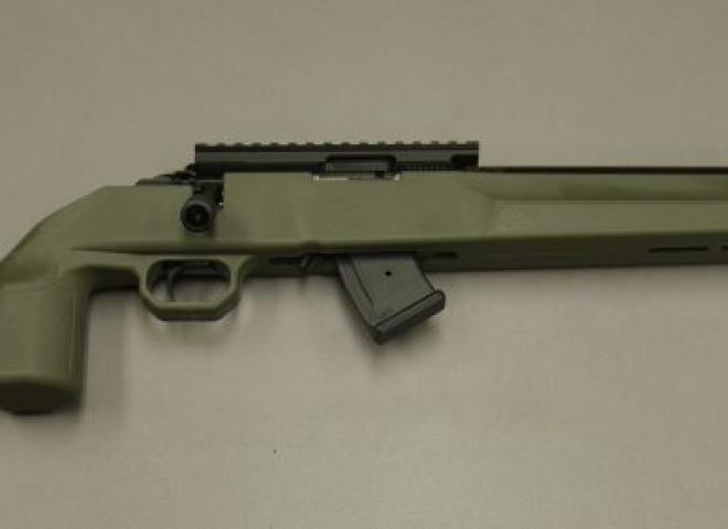 Howa .22 LR M1100 (Green Sporter)