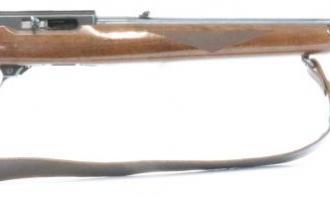 Ruger .22 LR 10/22 Delux Walnut Blued - Image 2