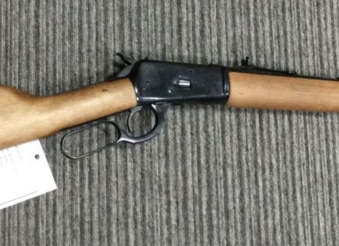 Rossi .44 Magnum Puma