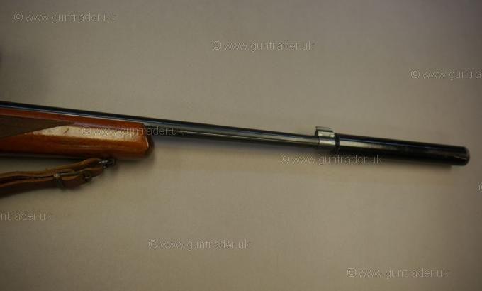 Ruger .22 LR 10/22