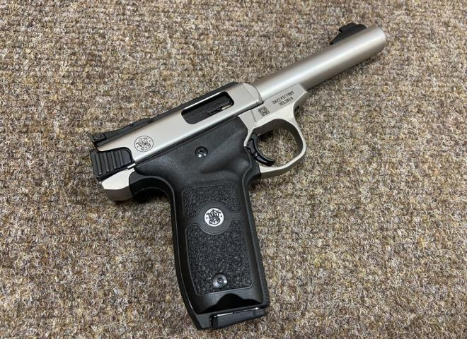 Smith & Wesson .22 LR SW22 Victory Target