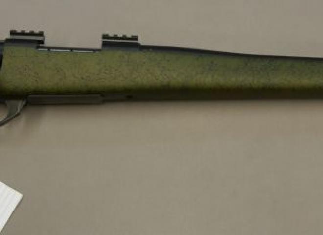 Weatherby .243 Vanguard 2 (Range Certified)