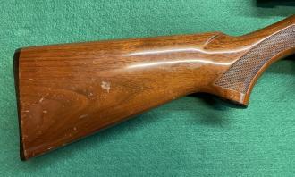 Remington .22 LR Speedmaster - Image 2