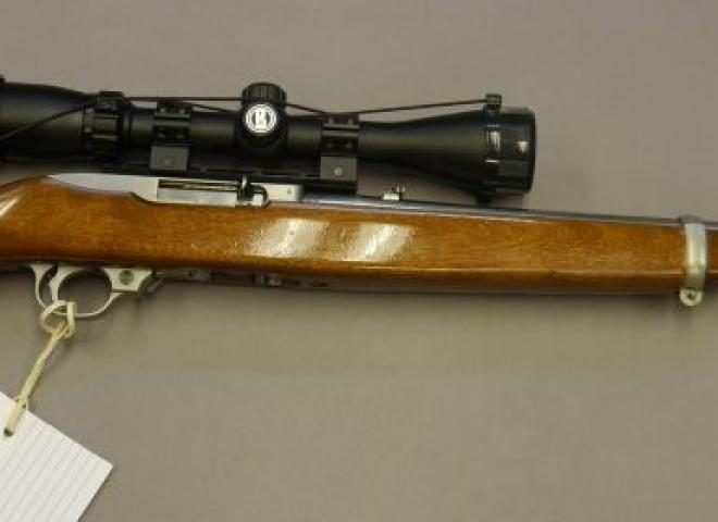 Ruger .22 LR 10/22 Stainless