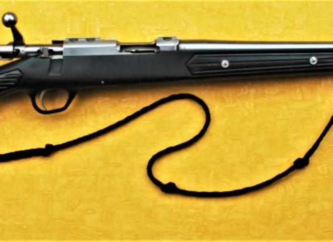 Ruger .22 WMR M77/22 Stainless Synthetic