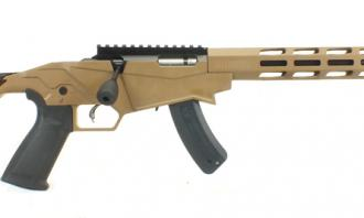 Ruger .22 LR Precision (Tan) - Image 1