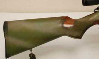 CZ .17 HMR (With Scope and Mod) - Image 2