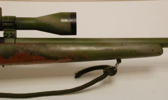 CZ .17 HMR (With Scope and Mod) - Image 3