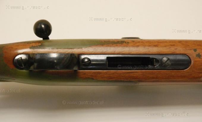 CZ .17 HMR (With Scope and Mod)
